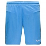 Nike - Shorts Park II Knit With Brief Blå