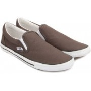 Fila RAFFAL Canvas Shoes For Men(Brown)