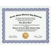 Greater Swiss Mountain Dog Degree: Custom Gag Diploma Doctorate Certificate (Funny Customized Joke Gift - Novelty Item)