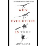 Why Evolution Is True, Paperback/Jerry A. Coyne