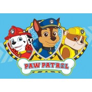 Disney Paw Patrol Tapijt / Speelkleed