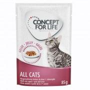 48x85g Concept for Life All Cats aszpikban nedves macskatáp