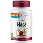 Solaray Maca Extrakt - 60 Kapseln