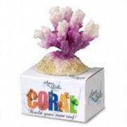 EBI AQUA DELLA CORAL MODULE S cauliflower coral white-purple 8,7x6,5x4,5cm