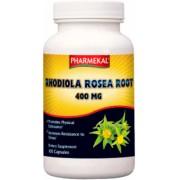 Rhodiola Rosea Root (100 kap.)