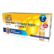 Arko Real Geleia Real + Fermentos Lácteos + Vitamina D