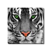 Tablou Canvas Tiger Face