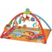Jucarie bebelusi Step2 Music and Motion Activity Gym Mat