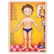 Woody Puzzle - Az emberi test