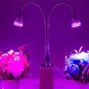 10w 10 Leds 360 Grados Flexible Lamp Holder Clip Led Acuario Luz Luz Luz De Efecto Invernadero Del Crecimiento Vegetal, Ac 85 - 265v (luz Roja + Luz Azul)
