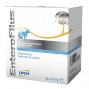 Drn Srl Enterofilus Fiale 36x10ml