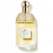 Ombrello lungo automatico Perletti Technology tinta unita uomo cod: 21583