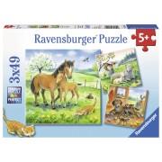 PUZZLE ANIMALE SI PUI, 3X49 PIESE - RAVENSBURGER (RVSPC08029)