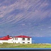 Dell LCD monitor Dell UltraSharp UP3216Q, 81.3 cm (32 palec),3840 x 2160 px 8 ms DisplayPort, mini DisplayPort, HDMI™, USB 3.0, audio, stereo (jack 3,5 mm)