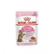 Royal Canin Wf Cibo Umido Per Gattini Sterilizzati 12x85g