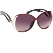 Ted Smith Over-sized Sunglasses(Brown)