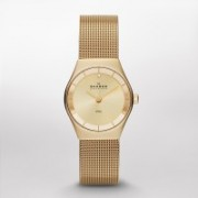 Skagen SKW2045 KLASSIK Watch - For Women(End of Season Style)