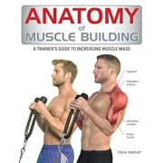 Anatomy of Muscle Building: A Trainer's Guide to Increasing Muscle Mass, Paperback/Craig Ramsay