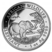 Stříbrná mince 100 Schillings Elephant (Slon africký) 1 Oz 2019 African Wildlife Series