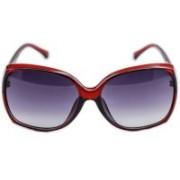 ERMINIO PALAMINO Over-sized Sunglasses(Blue)