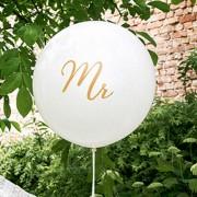 Jätteballong Mr