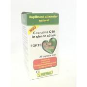 Coenzima Q10 in ulei de catina forte plus