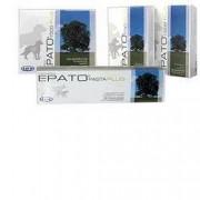 Drn Srl Epato 750 Plus 30cps Gatti