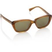 Superdry Wayfarer Sunglasses(Green)