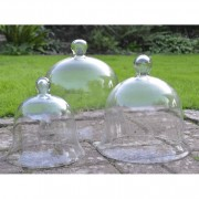 Access Garden Glass Bell Cloche