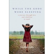 While the Gods Were Sleeping: A Journey Through Love and Rebellion in Nepal, Paperback/Elizabeth Enslin