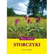 Storczyki. Flora Polski