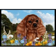 Cavalier King Charles Ruby- Best of Breed Summer Flowers Floor Mat