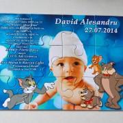 Puzzle cartonat, 12 piese, 20cm x 14 cm