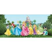 Fototapet FTDh 0625 Printesele Disney