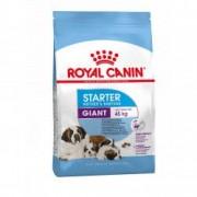 Hrana uscata pentru caini Royal Canin Giant Starter Mother and Babydog 15Kg