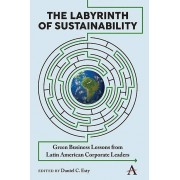The Labyrinth of Sustainability par Daniel C Esty