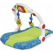 Активна гимнастика Ergo Gym, Chicco, 076802