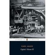 Capital: Volume 3: A Critique of Political Economy