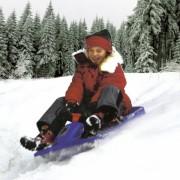 Sanie KHW Snow Fox