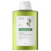 Klorane shampoo all'estratto essenziale di ulivo 200 ml