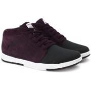 Puma Funist Demi NU Sneakers For Men(Purple)