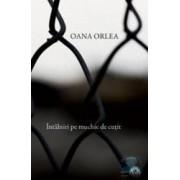 Intalniri pe muchie de cutit - Oana Orlea