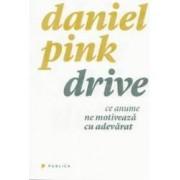 Drive. Ce anume ne motiveaza cu adevarat - Daniel Pink
