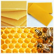 bee 30Pcs Honeycomb Foundation Bee Hive Wax Frames Waxing Beekeeping Equipment Bee Hive Comb Honey Frames