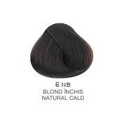 Vopsea Permanenta Evolution of the Color Alfaparf Milano - Blond Inchis Natural Cald Nr.6NB