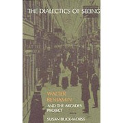 The Dialectics of Seeing by Susan BuckMorss