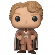 Pop! Vinyl Figura Funko Pop! Gilderoy Lockhart - Harry Potter