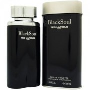 Ted Lapidus BLACK SOUL 100 ml Spray, Eau de Toilette