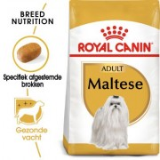 1,5kg Breed Maltese Adult Royal Canin Hondenvoer