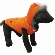 Haina pentru Caine, Pet Expert Freedy Orange